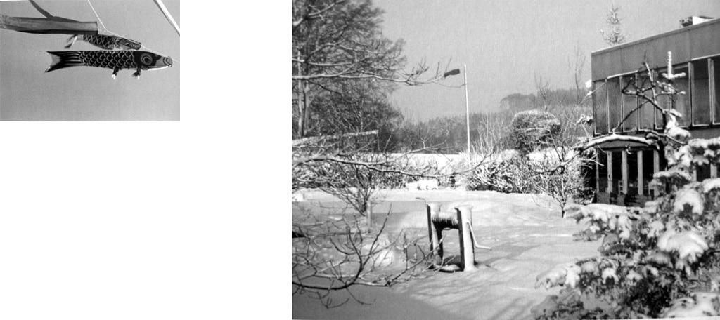 casanostra-upper lawn 01-hivern